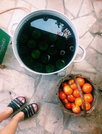 Διαδικασία για τον πελτέ ντομάτας